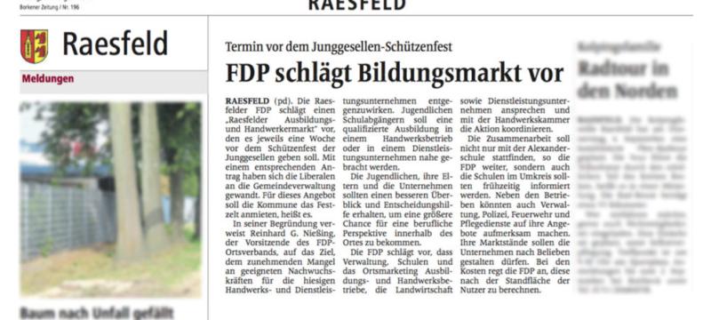FDP schlägt Bildungsmarkt vor